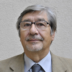 Josef Hanibal